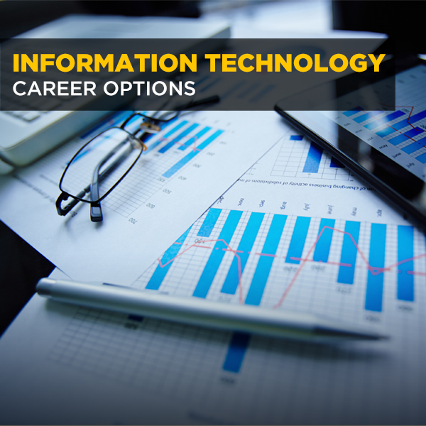 Information Technology Career Options