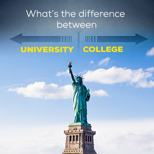What's the difference between Colleges and Universities in the USA?